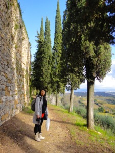 Taking a walk around the walls of the Old Town